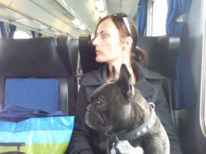 genieten van het uitzicht 300x225 Met de trein naar Nederland.