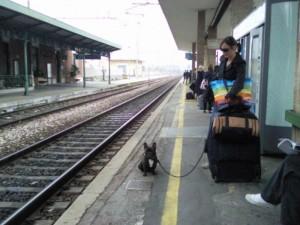 wachten op de trein 300x225 Met de trein naar Nederland.
