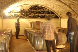 wijnkelder aurora 300x199 Op bezoek bij Aurora, een biologische wijnboer.
