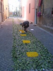 bloemen op straat 06 225x300 Bloemen en planten