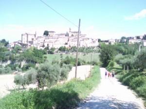 wandelen over witte weggetjes 05 300x225 Montottone, lovely city