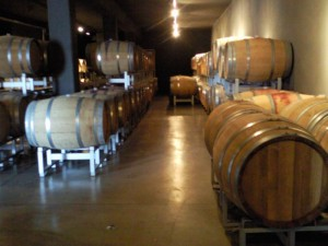 wijnkelder bij Le Caniette 300x225 Goed nieuws