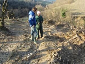 overleg 300x225 De boomgaarden gaan weg