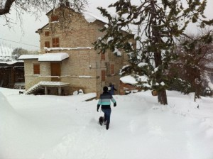 op bezoek bij onze ingesneeuwde buren 300x224 Sneeuw, sneeuw en nog eens sneeuw