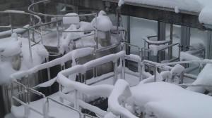 wijnhuis Cherri in de sneeuw 300x168 Sneeuw, sneeuw en nog eens sneeuw