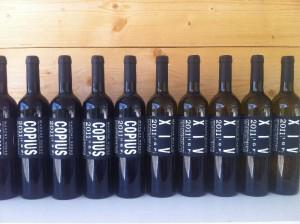 De wijnen van Casolare Re Sole 300x224 Een nieuw seizoen breekt aan